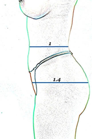 Brazilizn butt lift diagram